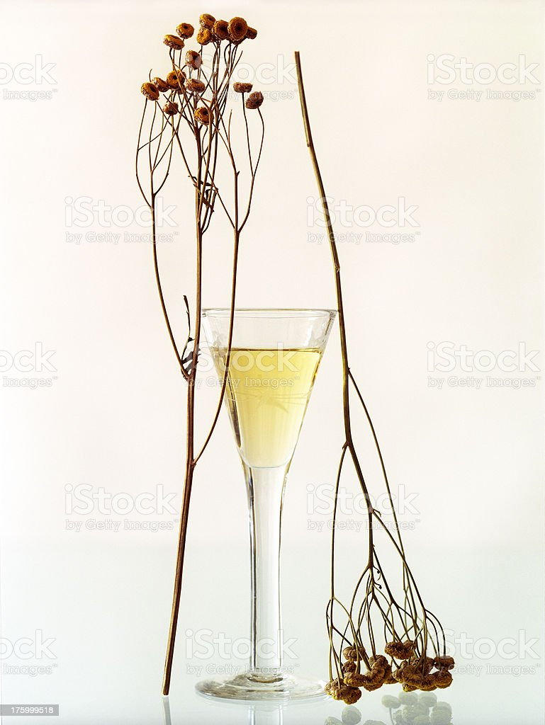 swedish schnapps with spices royalty-free stock photo