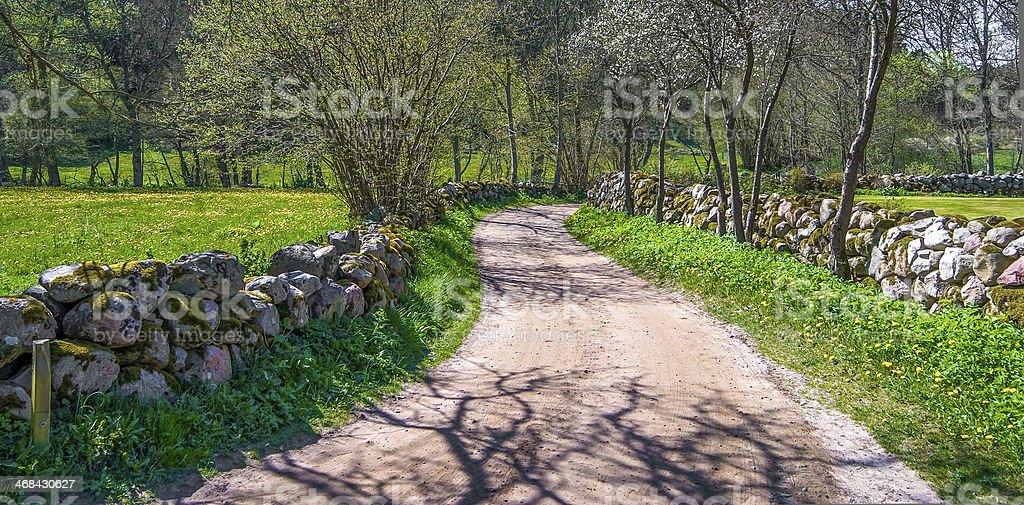 Swedish Spring/Summer countryside stock photo
