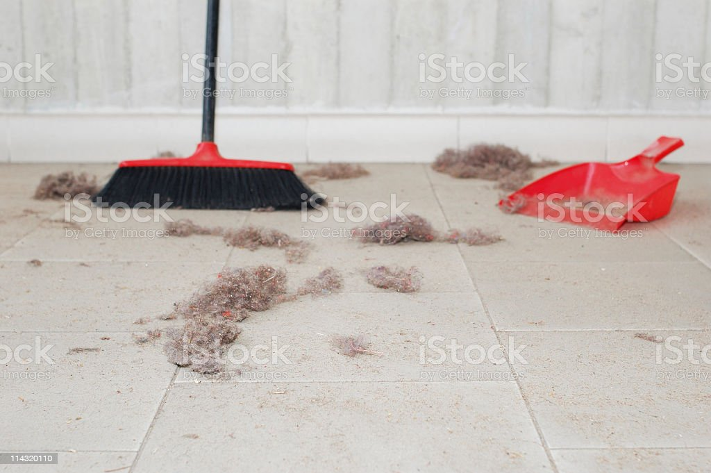 Sweep Up stock photo