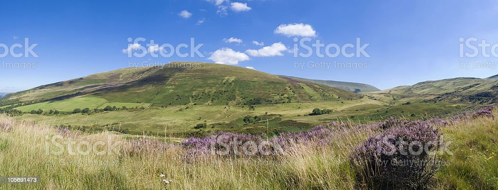 Sweeping landscape royalty-free stock photo