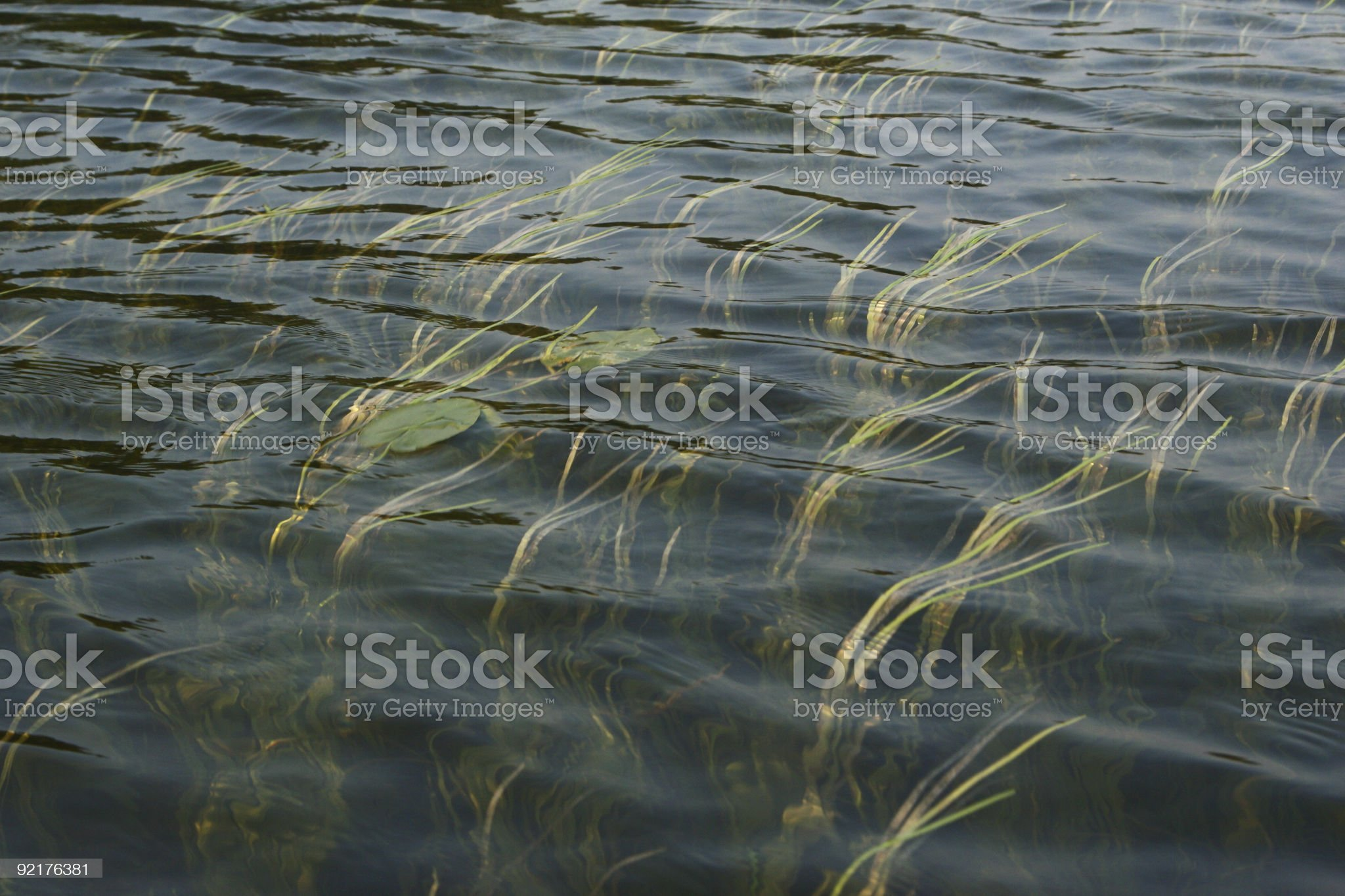 Sweeping Water royalty-free stock photo