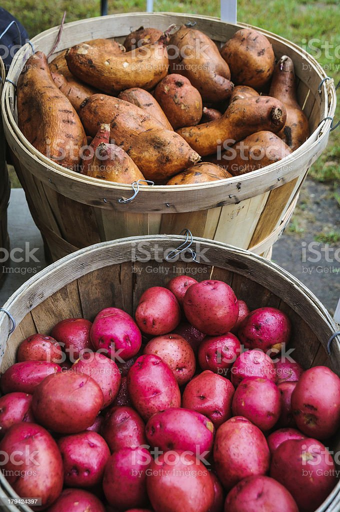Sweet and Red Potatoes royalty-free stock photo