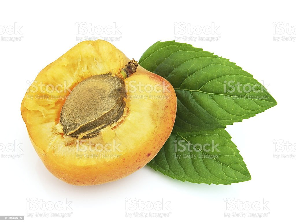 Sweet apricot with mint stock photo