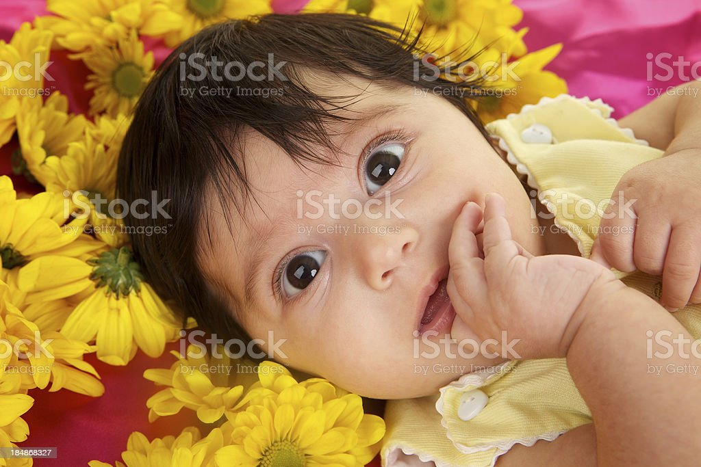 Sweet Baby Girl with Big Brown Eyes and Flowers royalty-free stock photo
