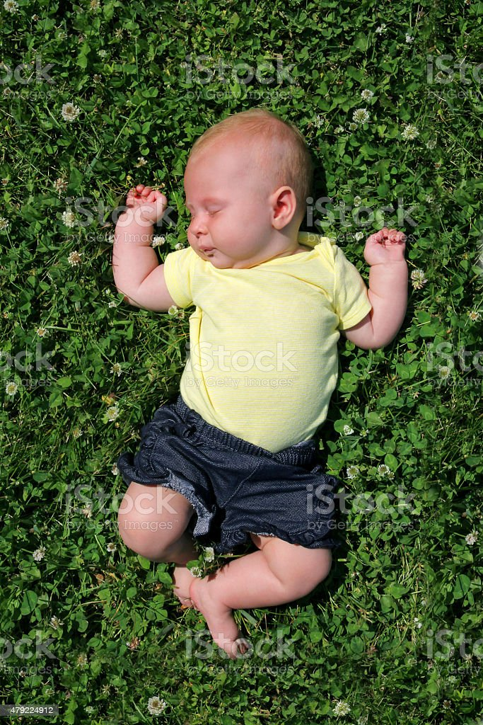 Sweet Baby Sleeping Outside in Clover Field stock photo