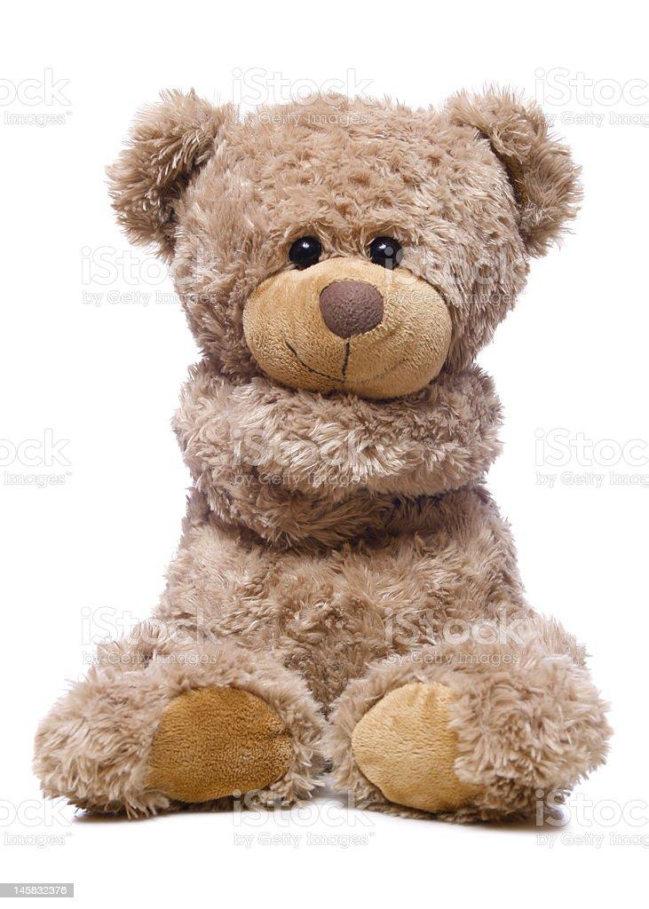 Sweet bear isolated on white background stock photo