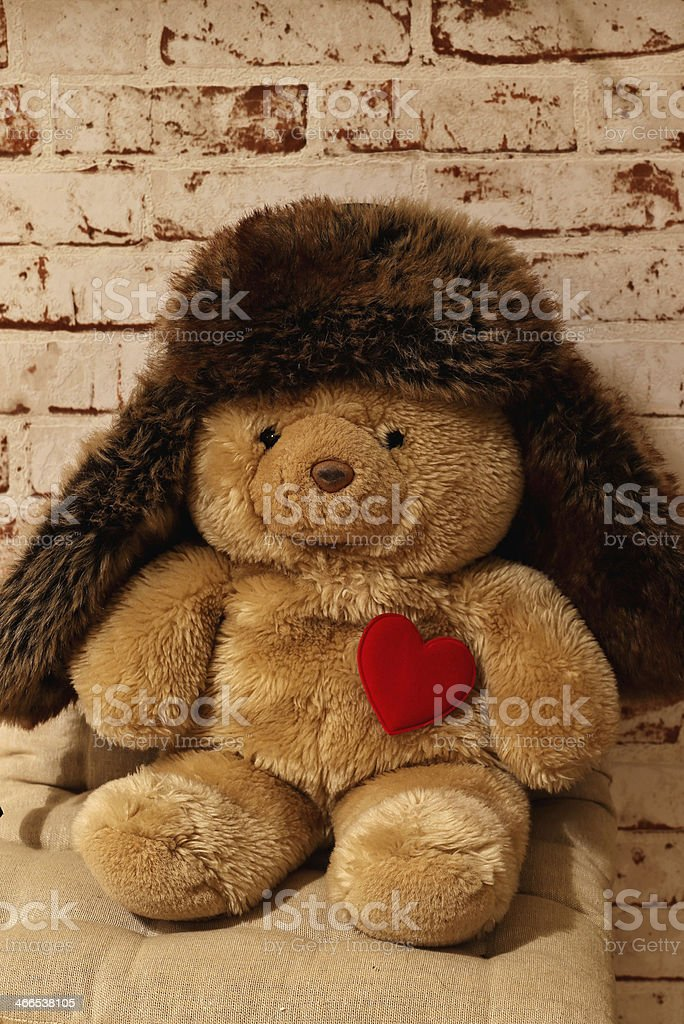sweet bear with a heart and a cap royalty-free stock photo