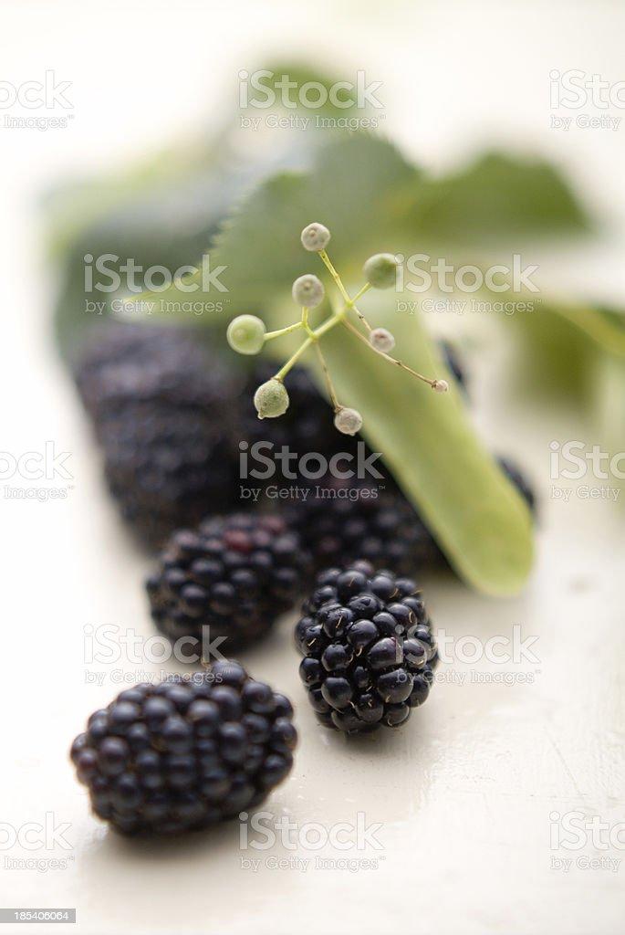 Sweet Blackberries royalty-free stock photo