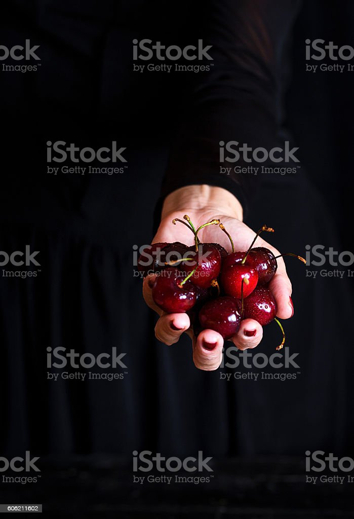 sweet cherry in woman hand stock photo