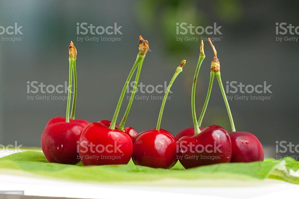 sweet cherry royalty-free stock photo