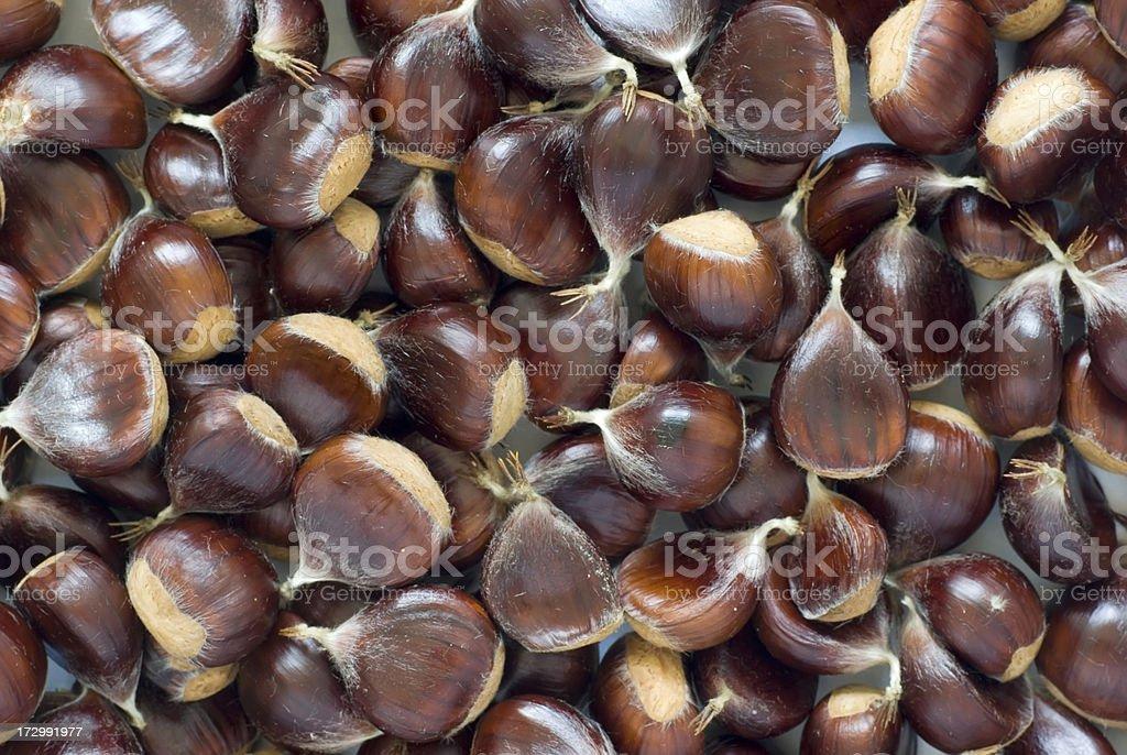 Sweet Chestnut Seeds (Castanea sativa) (Full Frame, Horizontal) royalty-free stock photo