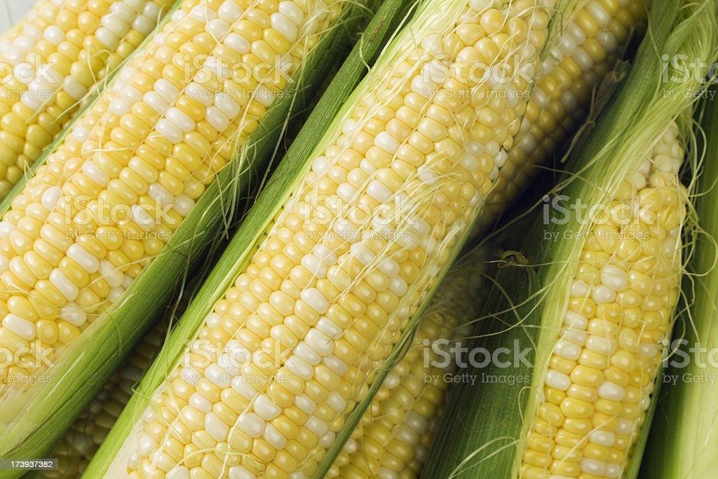 Sweet Corn Close-up Hz royalty-free stock photo