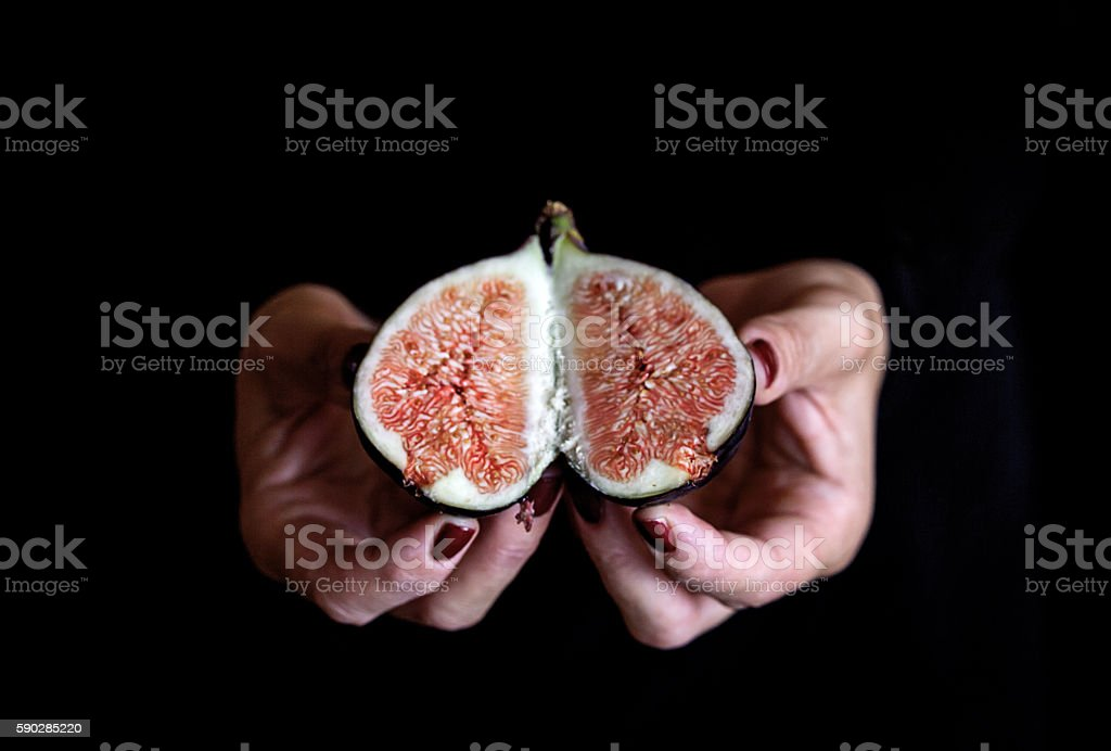 sweet fig in woman hand stock photo