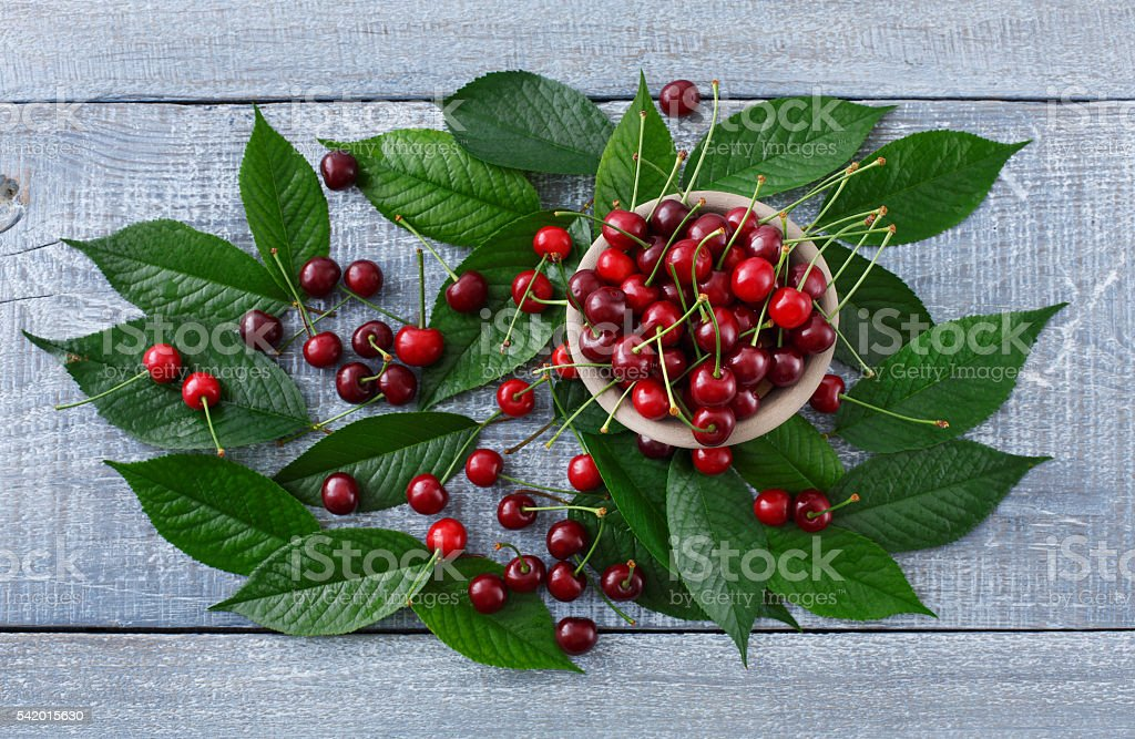 Sweet fresh cherries with green leaves on blue rustic wood stock photo
