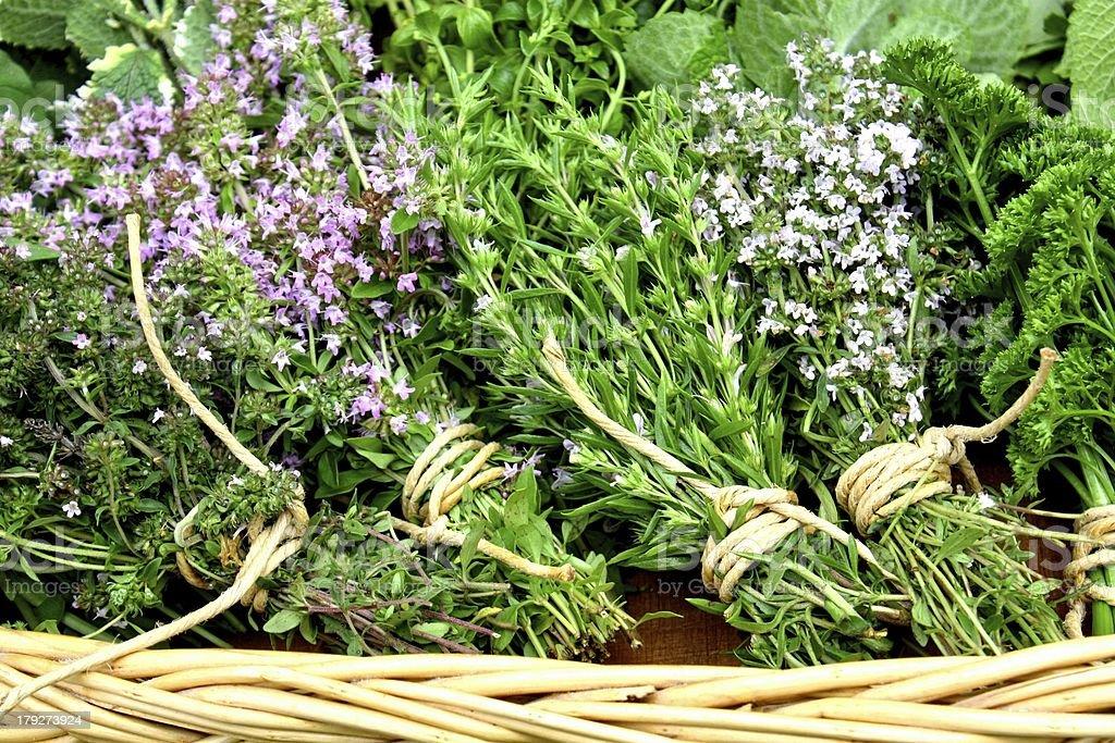Sweet herbs stock photo