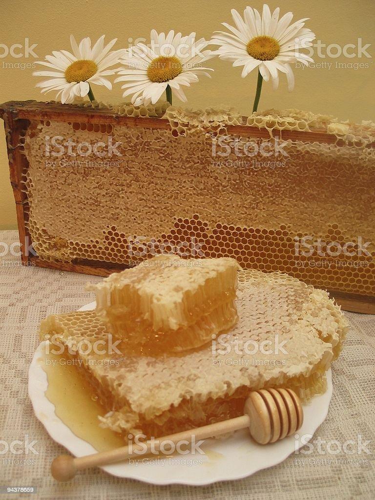 Sweet honey royalty-free stock photo