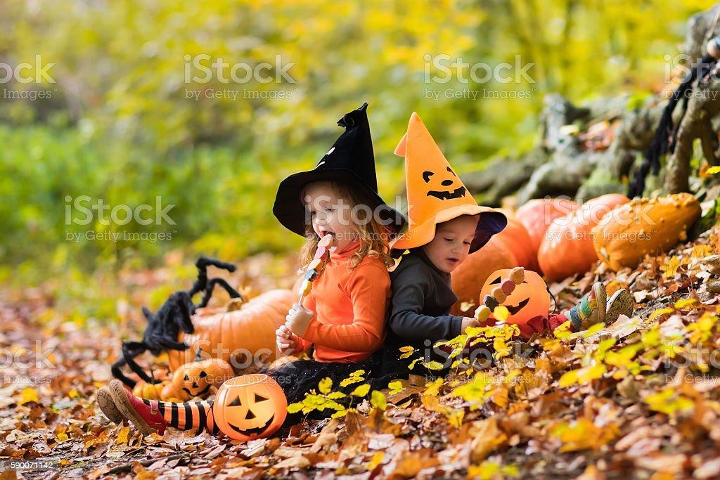 Sweet kids with pumpkins on Halloween stock photo