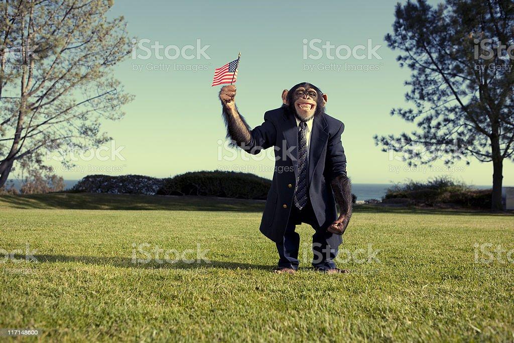 Sweet Land of Liberty stock photo