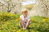 Sweet Little Boy Holding Flower in Orchard