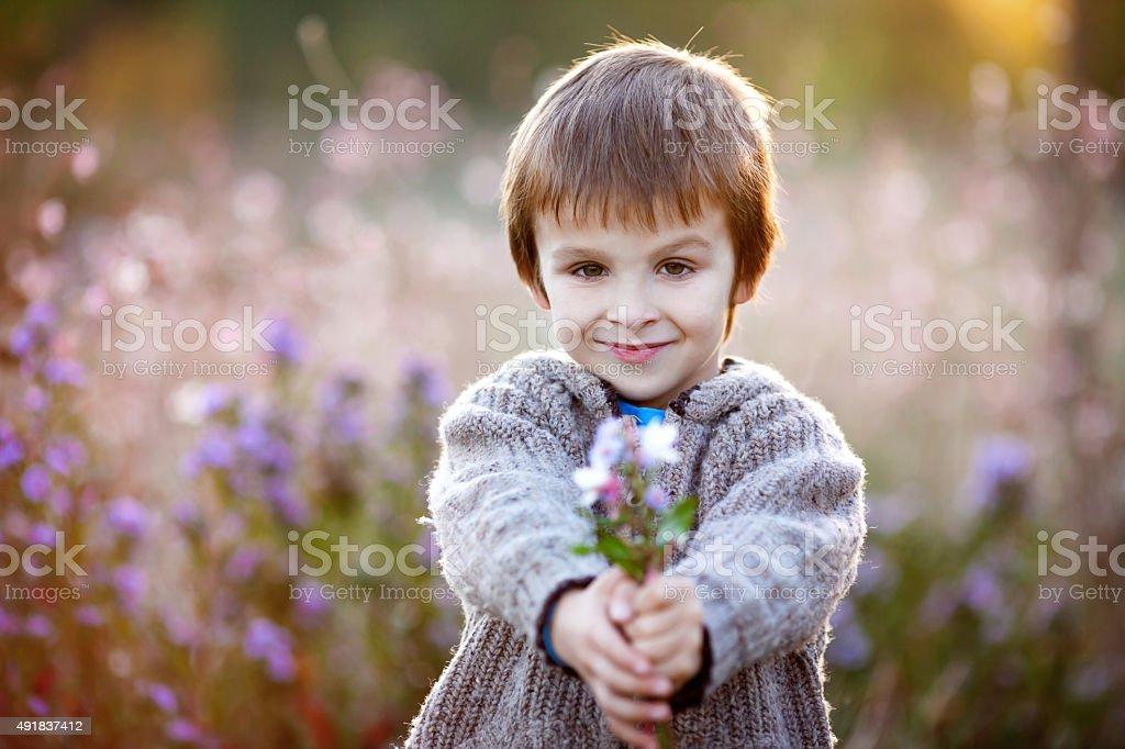 Sweet little boy, holding flowers on sunset stock photo