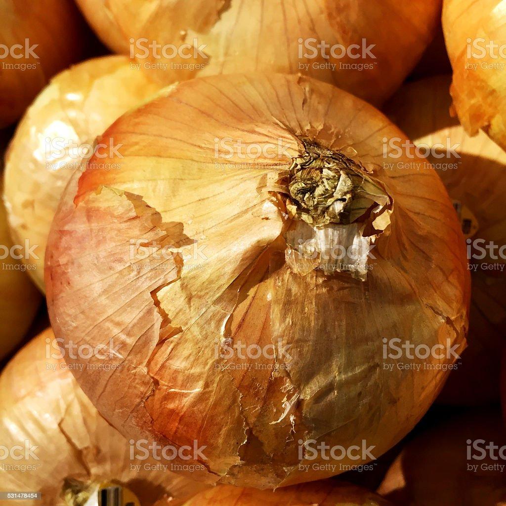 Sweet Onion stock photo