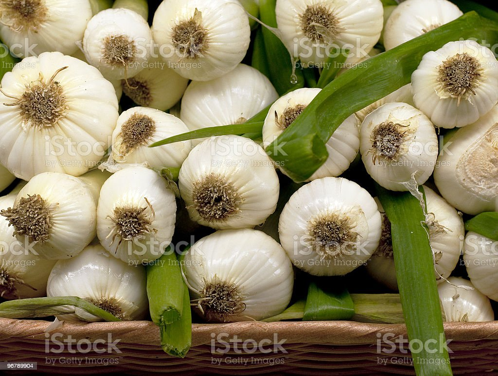 Sweet Onions stock photo