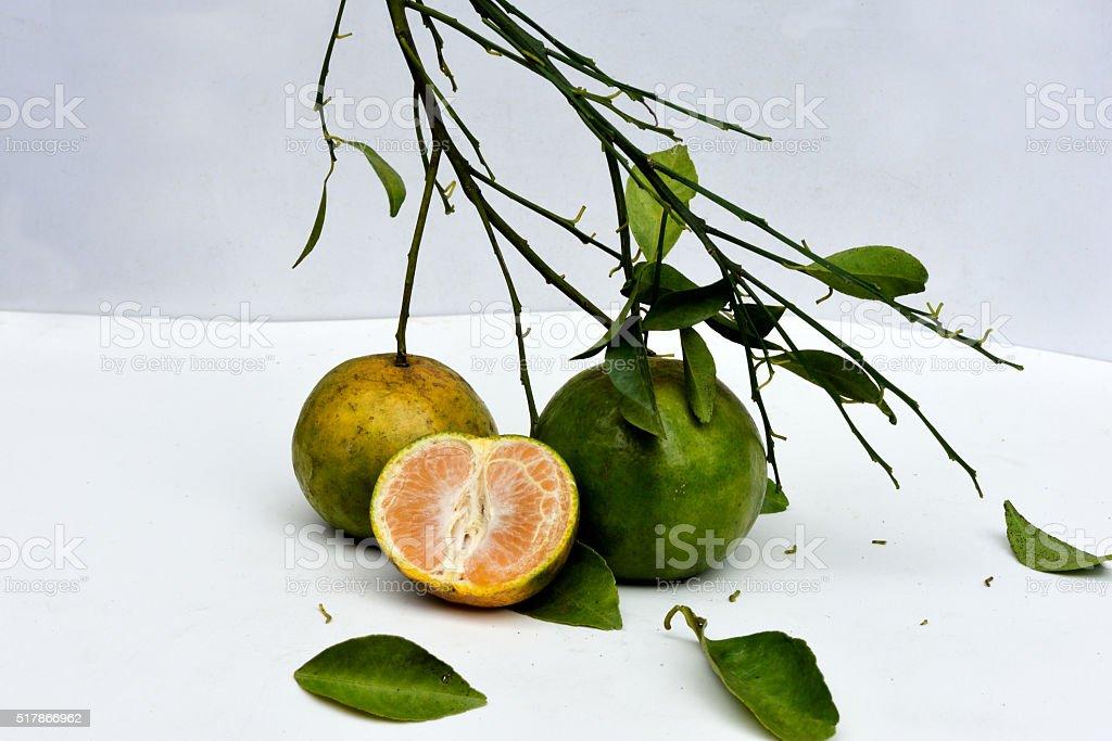 Sweet oranges stock photo