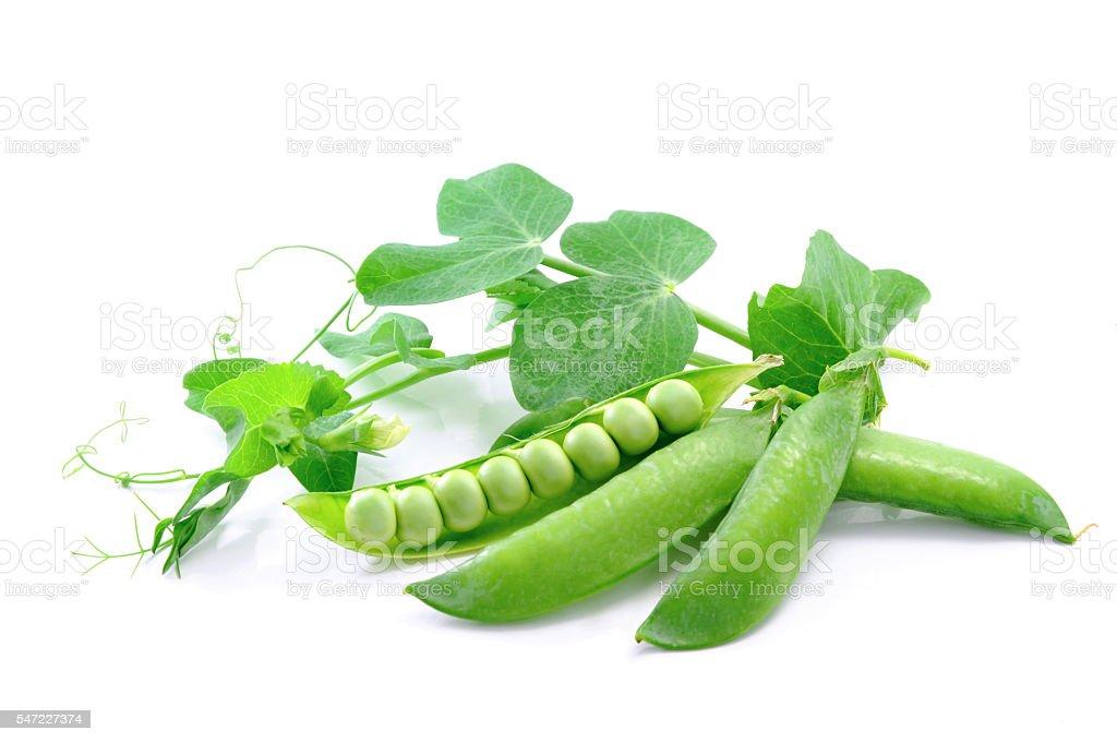 Sweet peas. stock photo