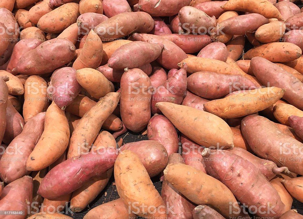 Sweet potato or Kumara background stock photo