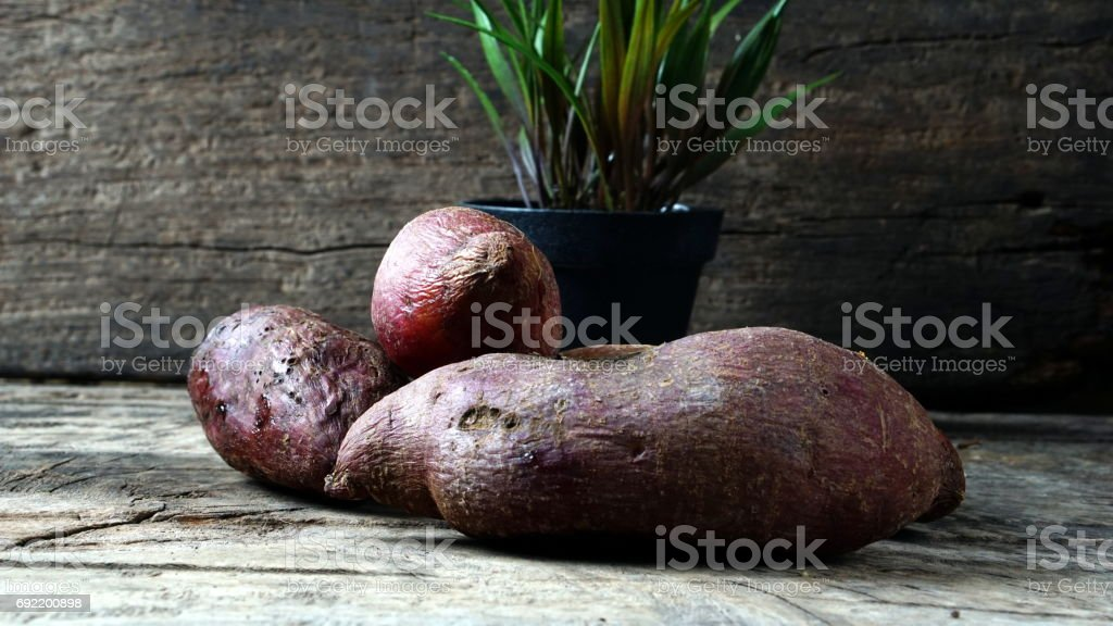Sweet potato stock photo