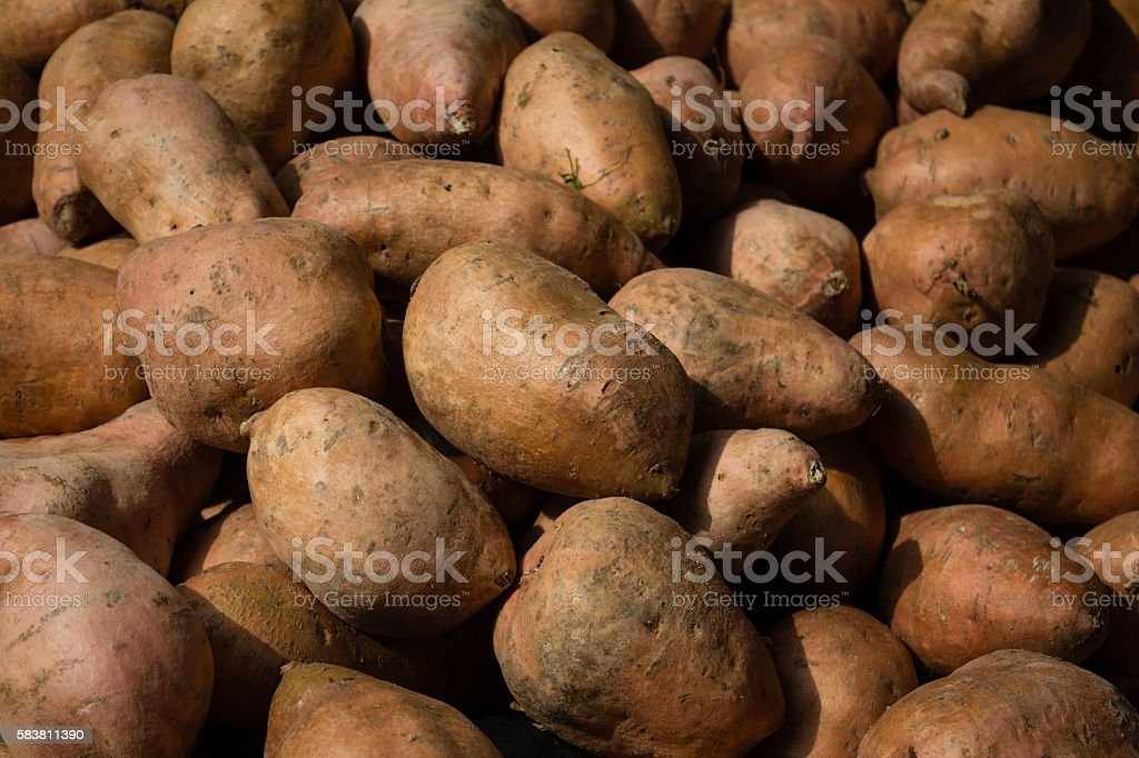 sweet potato -  raw sweet potatoes background - stock photo