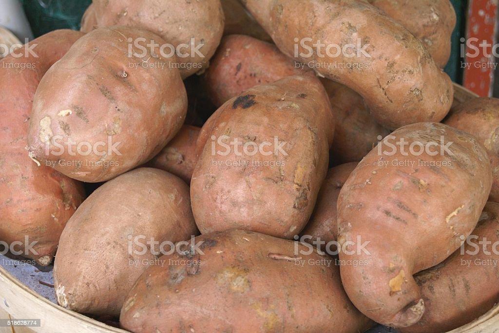 Sweet potatoes. Kumara stock photo