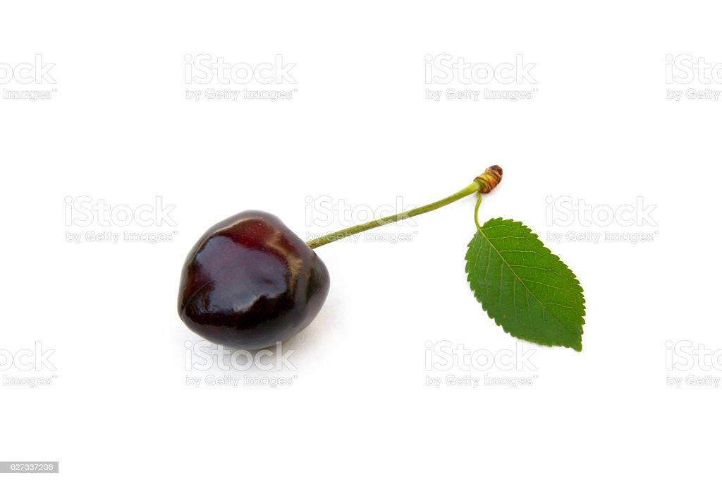 Sweet ripe cherries stock photo