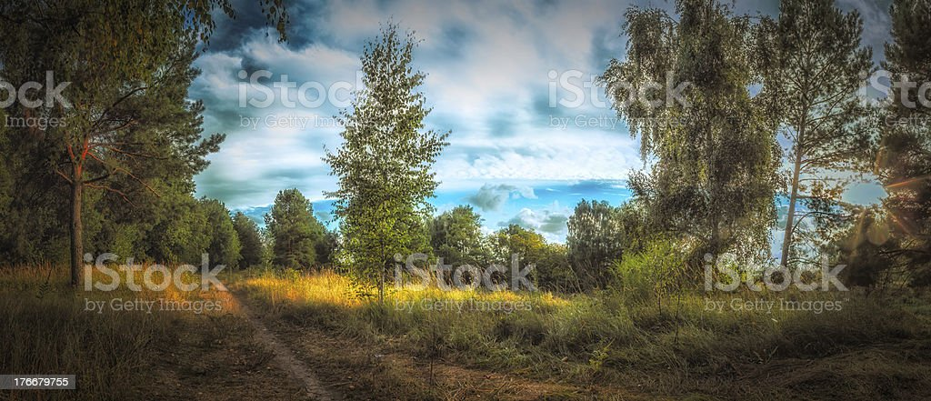 Sweet sun/shadow landscape panorama royalty-free stock photo
