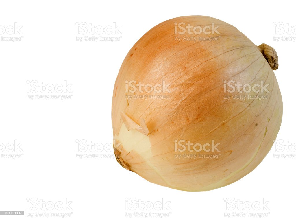 Sweet Vildalia Onion royalty-free stock photo