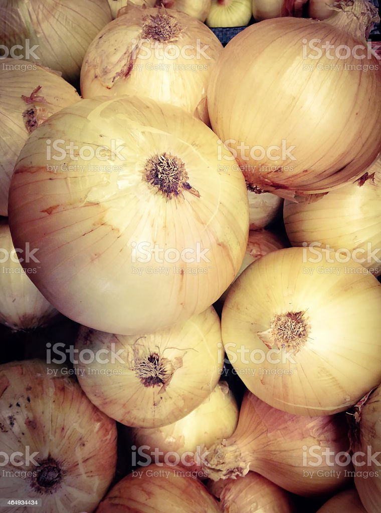 Sweet Vildalia Onions stock photo