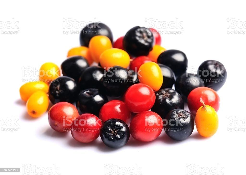 Sweet wild berries stock photo