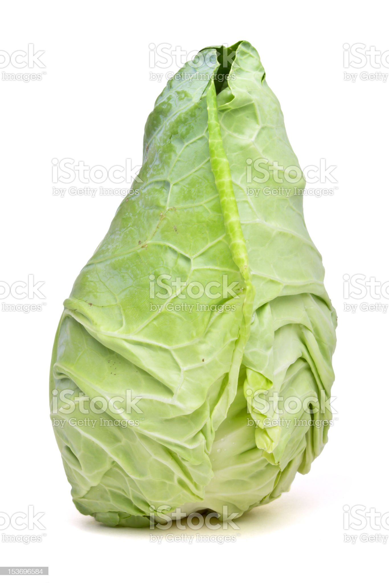 Sweetheart Cabbage royalty-free stock photo