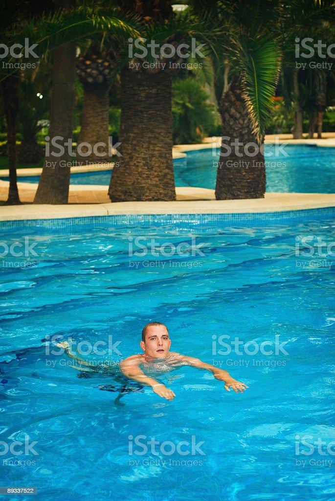 Swim royalty-free stock photo