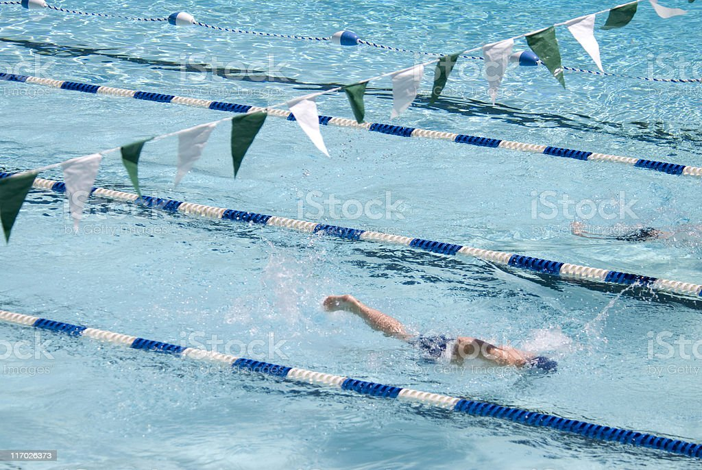 Swim Race royalty-free stock photo