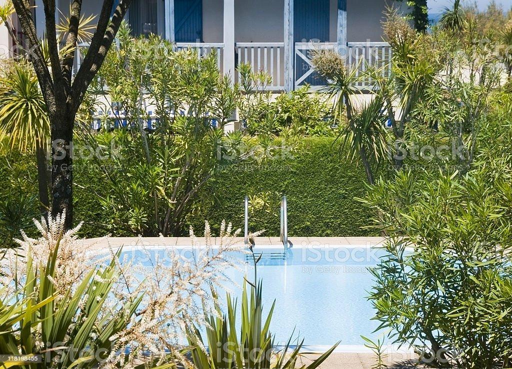 Swiming pool and lush foliage royalty-free stock photo