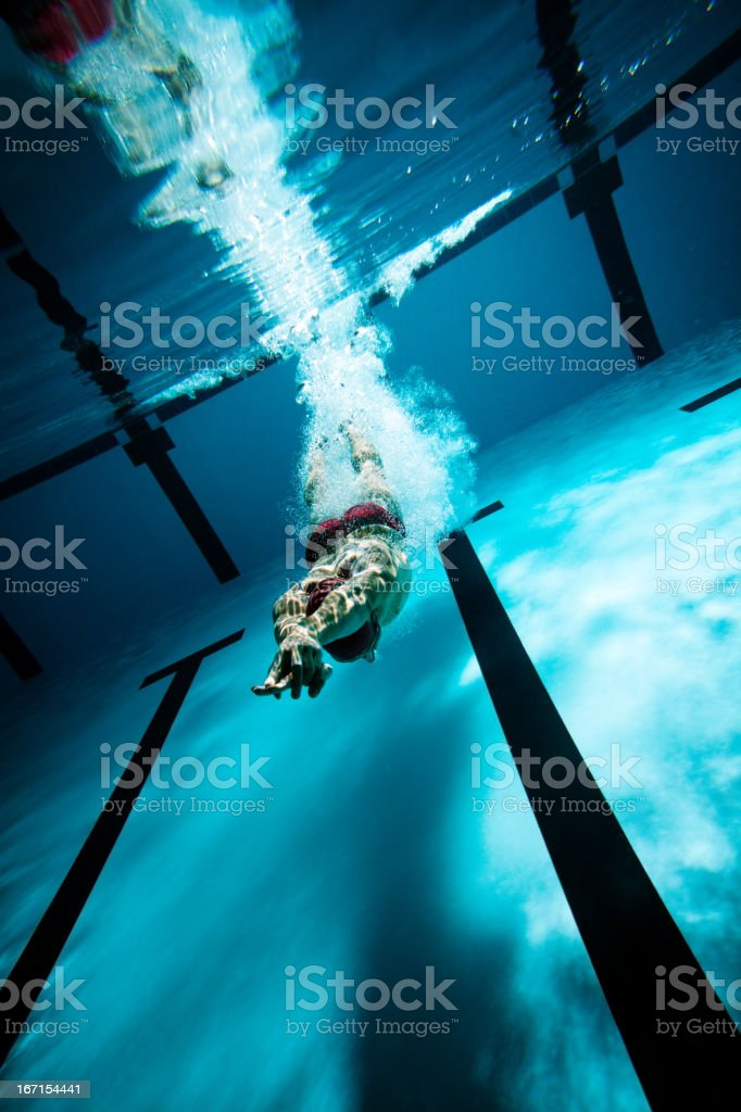 Swimmer diving after the jump in swimming pool royalty-free stock photo
