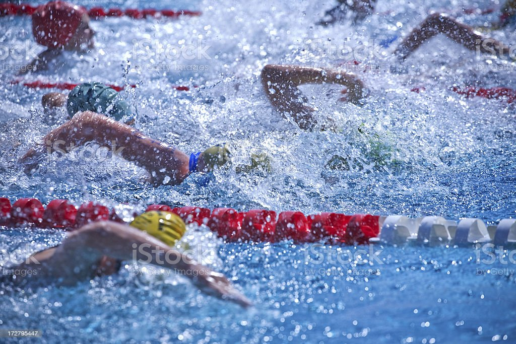 Swimmers royalty-free stock photo
