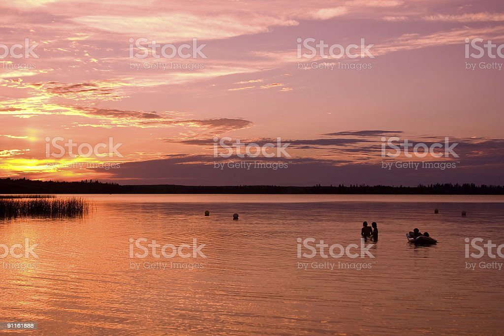 Swimming at Sunset royalty-free stock photo