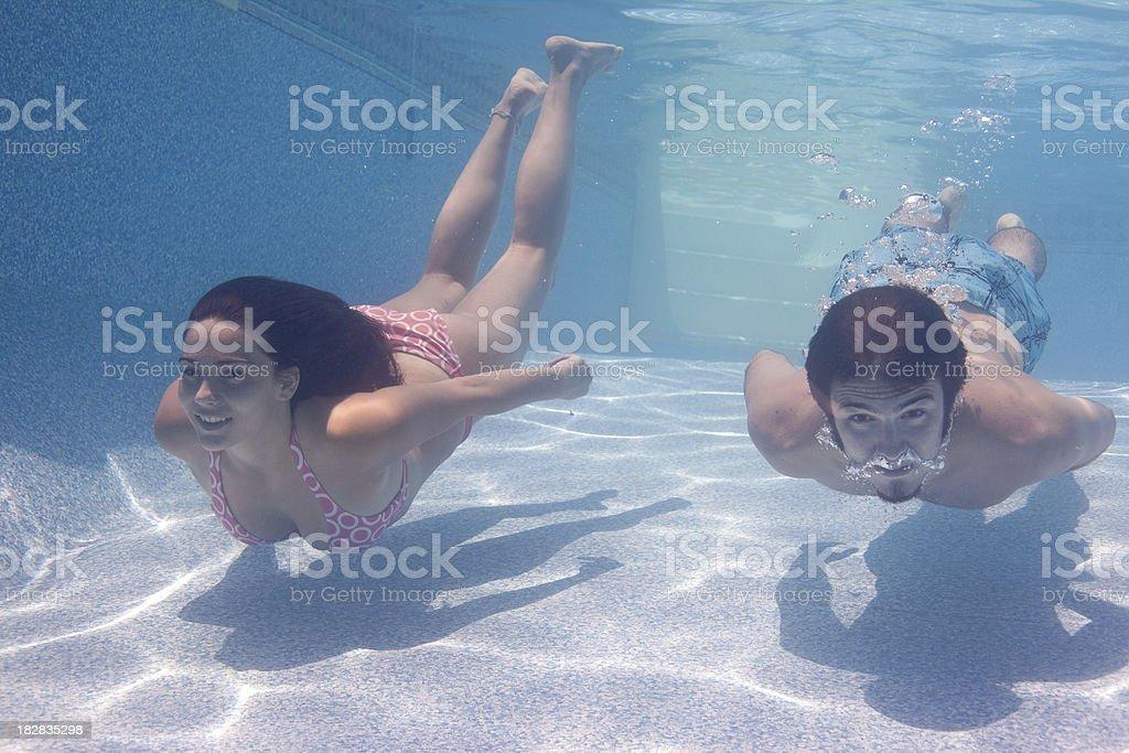 Swimming Buddies stock photo