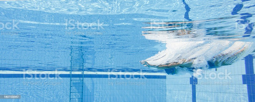 Swimming dive start stock photo