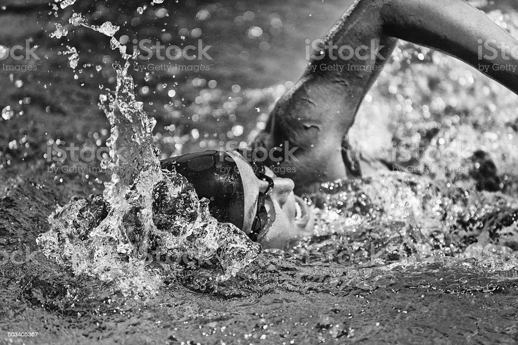 Swimming fast stock photo