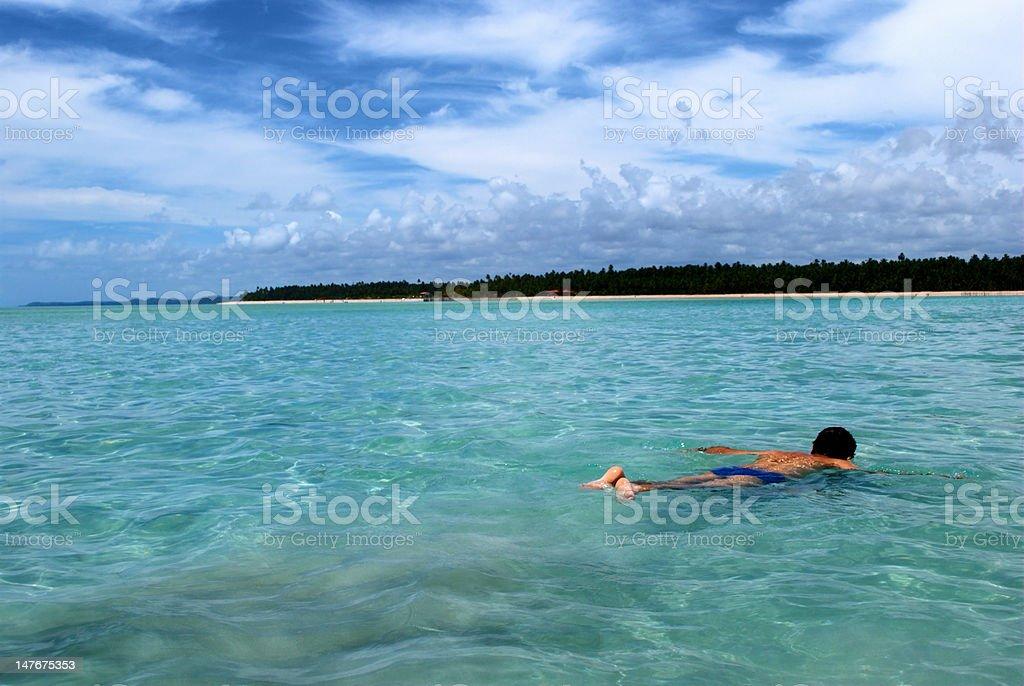 Swimming in crystalline clear waters, Maragogi,  Brazil royalty-free stock photo