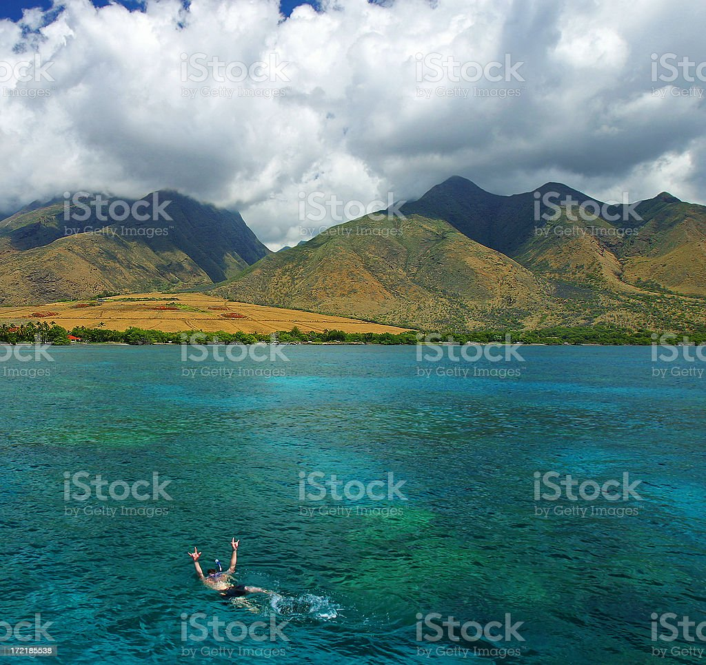 Swimming in Paradise royalty-free stock photo