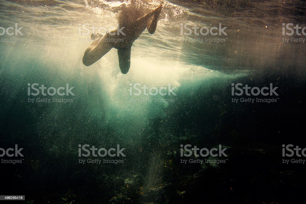 Swimming in the ocean stock photo